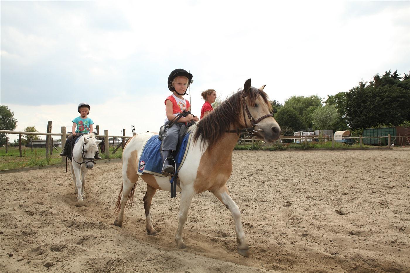 Ponylessen te Stal Milleghemveld in Ranst